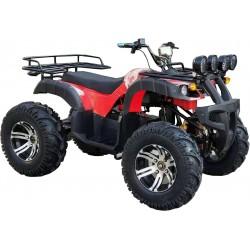 Quad Elettrico 3000W
